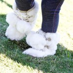This is a close-up of the playful faux fur boots made by baby Gap that were provided by Angels & Rascals. They were worn by our two year old model, Mackenzie.