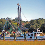 featured-image-shemcreek-shrmp-boats