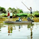 The Guiding Life: Siren Song of the Salt Water