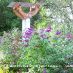 Hidden Retreat, Special Treat – Mount Pleasant's Marsh View Trail