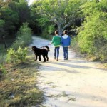 A Secret Retreat: Mount Pleasant's Marsh View Trail