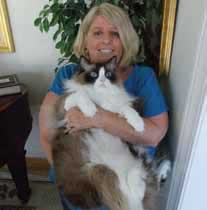 Ann Pape, 5th grade teacher Mt Pleasant SC with pet ragdoll cat - teachers in Mt Pleasant