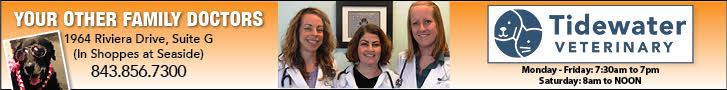 Tidewater Veterinary - your other family doctors