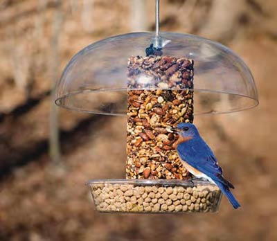 Bird feeder from Wild Birds Unlimited