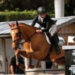 Equestrian Life in East Cooper: Horsing Around