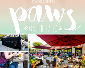 Paws On The Patio @ Mount Pleasant Towne Centre | Mount Pleasant | South Carolina | United States
