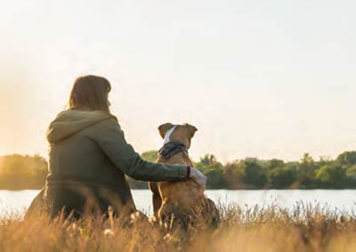 A pet owner's love for their dog