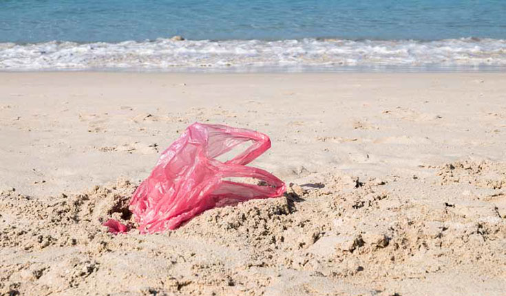 A plastic bag litters the beach