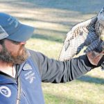 The Center for Birds of Prey Takes Storms Seriously