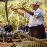 Boone Hall Plantation: Adding Depth and Enrichment to History