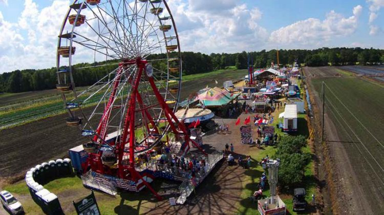 The Lowcountry Strawberry Festival: Boone Hall Plants Seeds for Fun