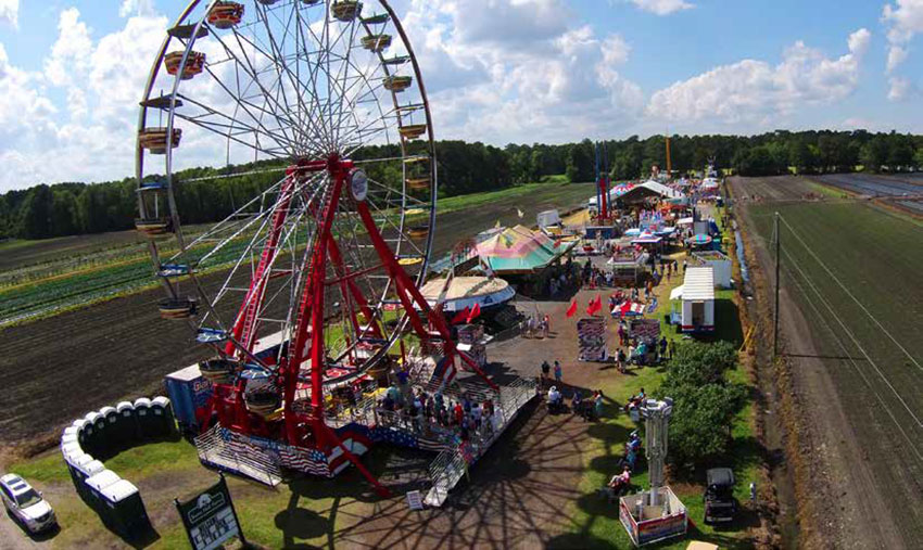 The Lowcountry Strawberry Festival