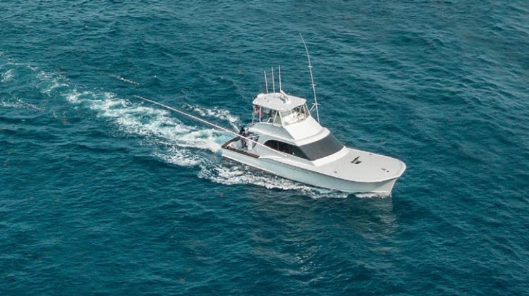 The Catch of the Day: Mount Pleasant Magazine Embarks on Local Charter Trips