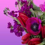 Belva's Flower Shop: All the Pretty Flowers