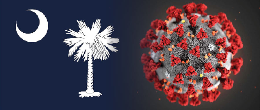 Coronavirus and the South Carolina flag